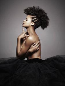 braided afro hair